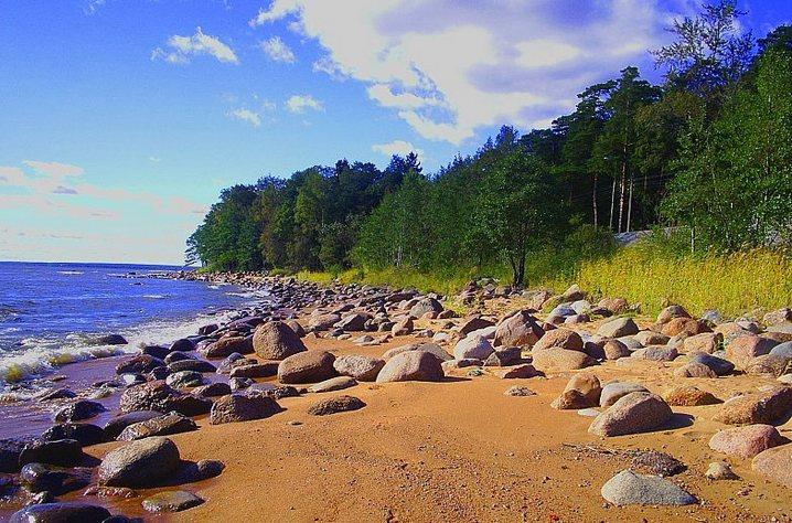Пляжи и чистый воздух — главные достоинства Курортного района. Фото: http://glavboard.ru