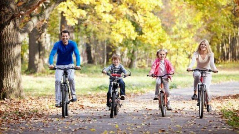 «Добрыня»: Всей семьей можно гулять по паркам поселка