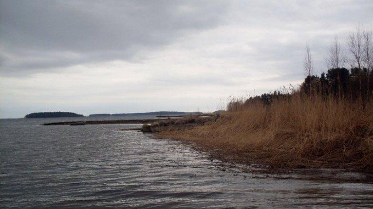 «Отражение»: Прекрасное местро отдыха — озеро Сарженское. До него на машине всего 20 минут