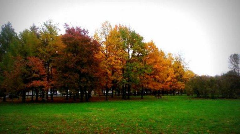 «Линкор»: Живописный парк «Новознаменка» расположен недалеко от жилого комплекса (20 минут пешком)