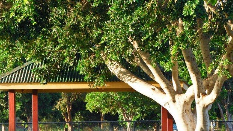 «Золотые купола»: Предусмотрены зоны для пикников и барбекю