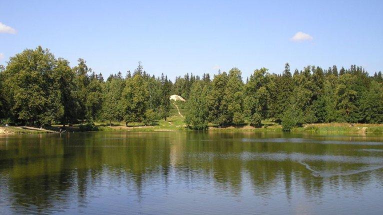 «Паркола»: Гордость района — Шуваловский парк — находится в 20 минутах ходьбы от «Парколы»