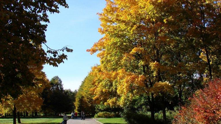 «Роза ветров»: Южно-Приморский парк расположен в 15 минутах ходьбы от ЖК
