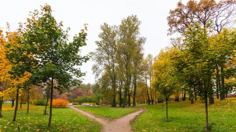 «Усадьба на Ланском»: Вблизи жилого комплекса находятся два парка