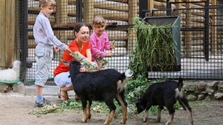 «Изумрудный»: Зоопарк «Радуга» всего в километре от «Изумрудного»