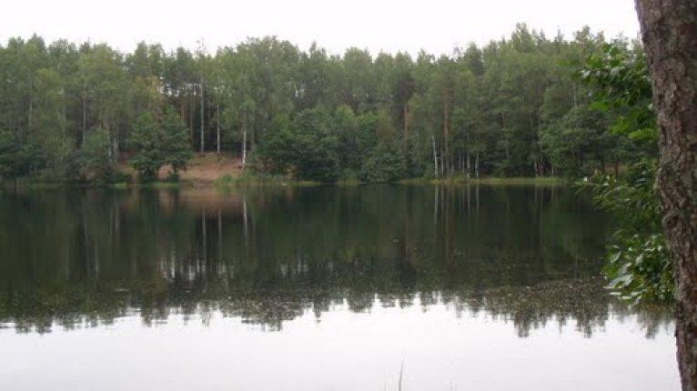 «Агалатово»: Светлое озеро