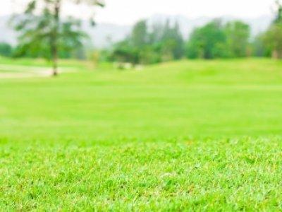 Как зарегистрировать право собственности на земельный участок. Фото: freedigitalphotos.net