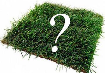 Как многодетной семье получить участок земли бесплатно? Фото: freedigitalphotos.net