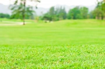 Особенности пожизненно наследуемого владения земельным участком. Фото с сайта freedigitalphotos.net